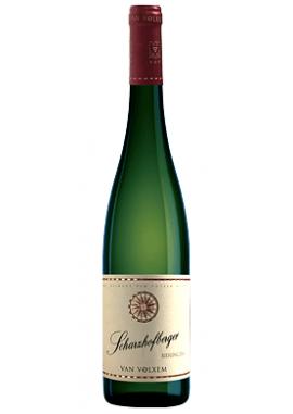 Grand Cru Scharzhofberger Riesling