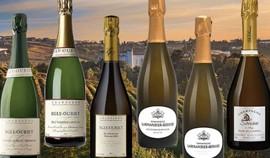 Spécial Fêtes : les meilleurs champagnes de vigneron !
