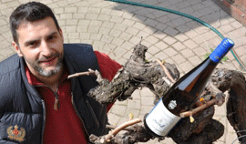 Stéphane Montez : vigneron phare du Rhône Nord