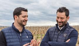 Florent et Clément Pinard signent un millésime 2016 éblouissant